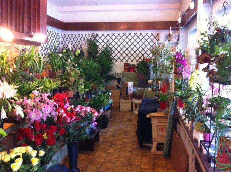 Fleurs à vendre - 119.0 m2 - 75 - Paris